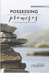 Possessing The Promises: Joshua Workbook